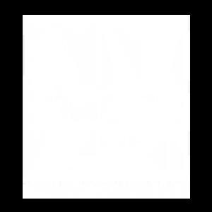 Ambosart_